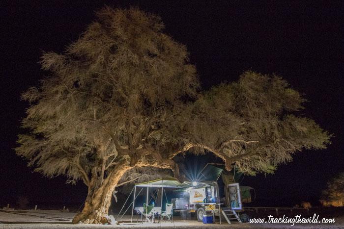 Bushwakka Sundowner at the Sesriem campsite