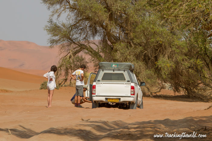 The sandy road to Deadvlei