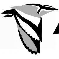 African Bird Club