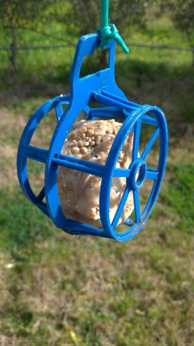Bird Feeder with ball of fat